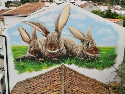Pintura graffiti arte urbana em festival Pin'arte Ulme executada por Miúdo